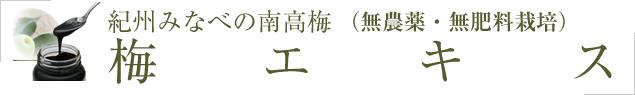 梅エキス(梅肉エキス)無農薬の南高梅の梅エキス